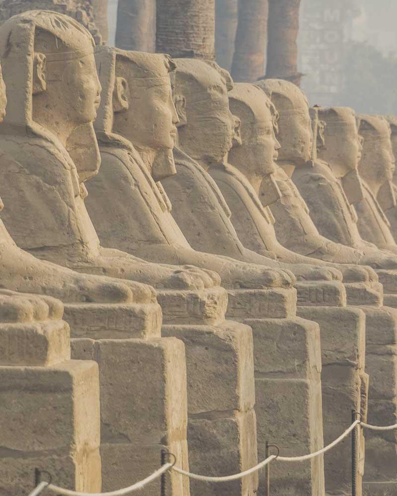 grid-vp-egipto1